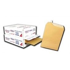 "Brown Envelope BM1012 120gm 10"" x12"" (100's /Box)"