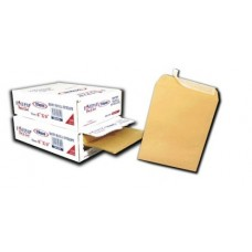 "Brown Envelope 10"" x15""BM1015 120gm (100's /Box)"